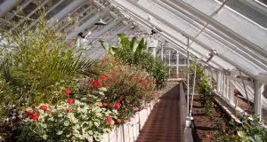 دانلود رساله پایان نامه گلخانه Greenhouse