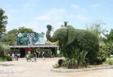 Photo of دانلود رساله باغ وحش برای طراحی معماری پایان نامه Zoo